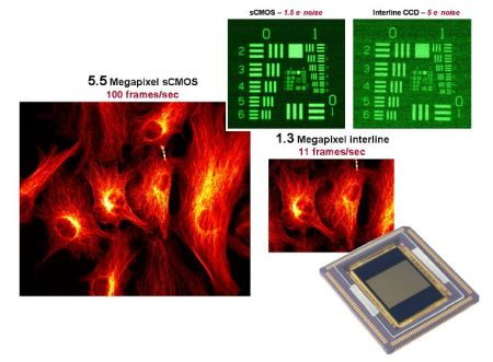 Scientific CMOS Technology-A High-Performance Imaging Breakthrough