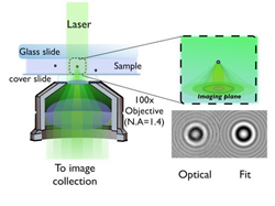 In the microscope, a laser beam illuminates the sample. Light scattered by the sample creates an interference pattern which is magnified and recorded. Then measurements of the particle's position, size, and refractive index are obtained.